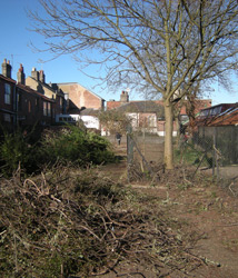 Site clearance March 2010